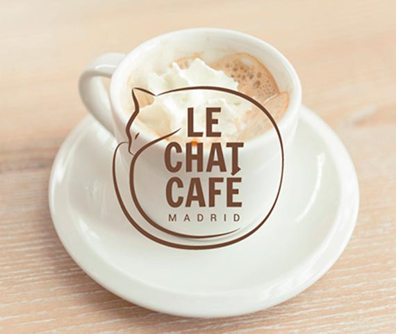 Le chat cafe